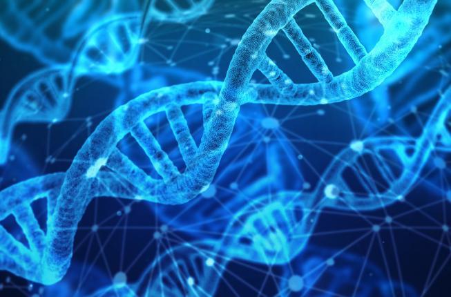 Collegamento a Scuola di Specializzazione in GENETICA MEDICA (accesso riservato ai non medici)